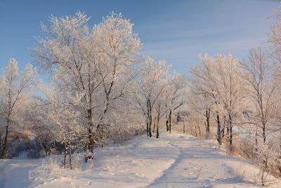 Снежный февраль в Забайкалье